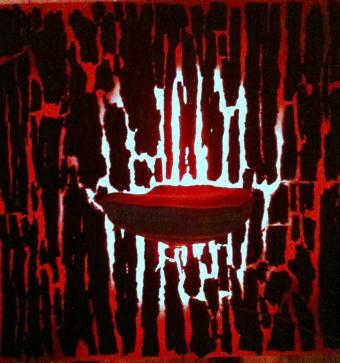 Sacralisation du Champignon Amadouvier et ses écorces des diverses arbres sur lesquels il vit, avec éclairage à l'arrière du plexiglass rouge de 10mm.